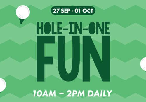 Hole-In-One Fun